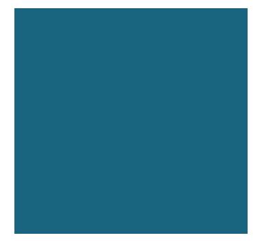 Laser skin Icon | Brisbane Cosmetic Surgery